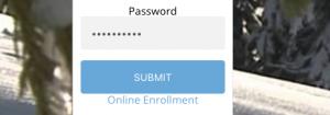 Online Banking Portal